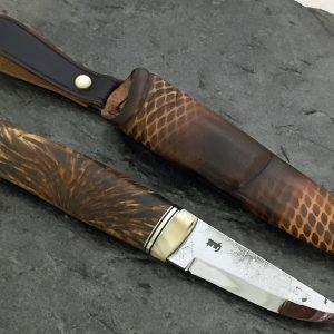 Valbjørk og moskushorn